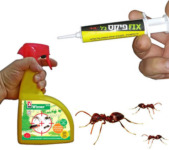החבילה המושלמת להדברה - לקיץ נקי מחרקים בבית ובחוץ, , large image number null