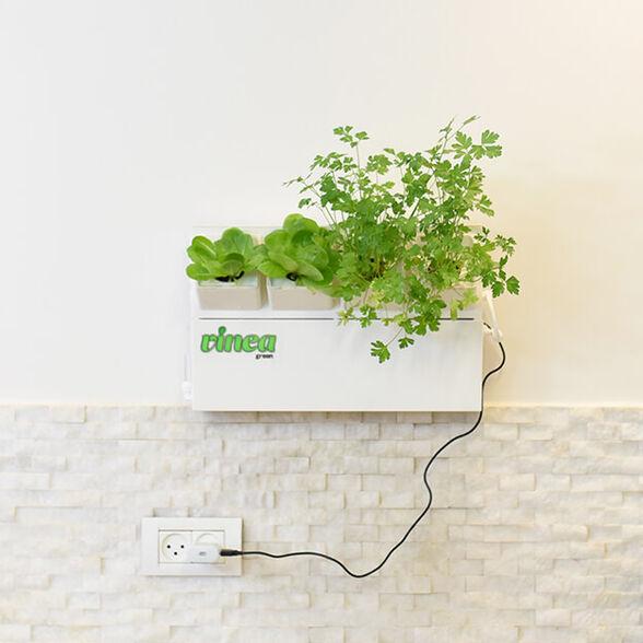 הידרופוניקה 4 צמחים | VINEA GREEN, , large image number null