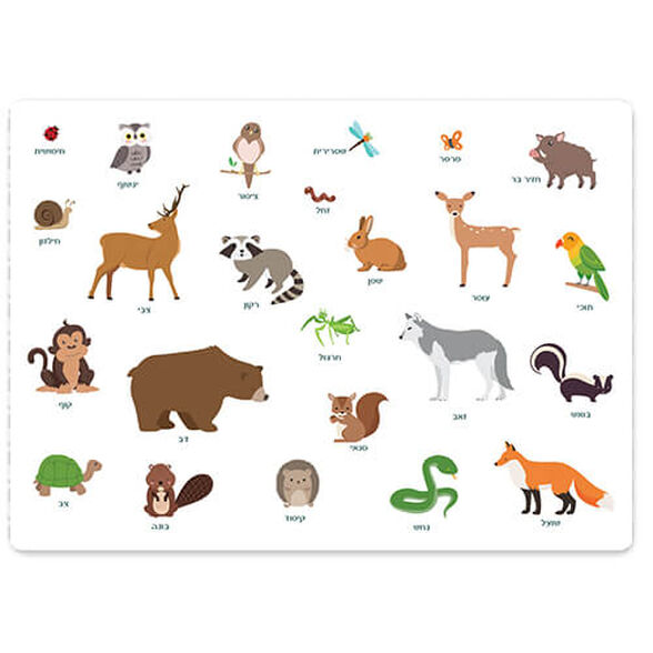 פלייסמנט חיות יער קסום בו נפגוש ונכיר איזה חיות מתגוררות ביער, , large image number null
